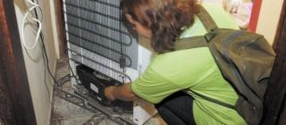 Dengue – saiba os lugares dentro de casa com possíveis focos. Fique atenta!