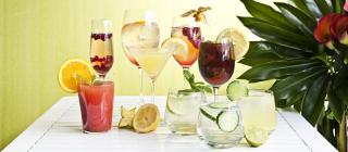 Os melhores copos para servir cada tipo de bebida!